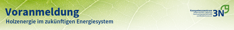 3N-Newsletter Holzenergie im zukünftigen Energiesystem